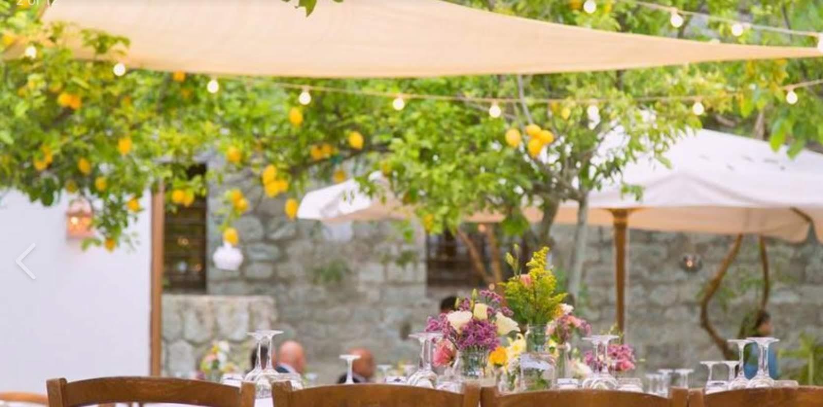 Matrimonio ispirazione limoni